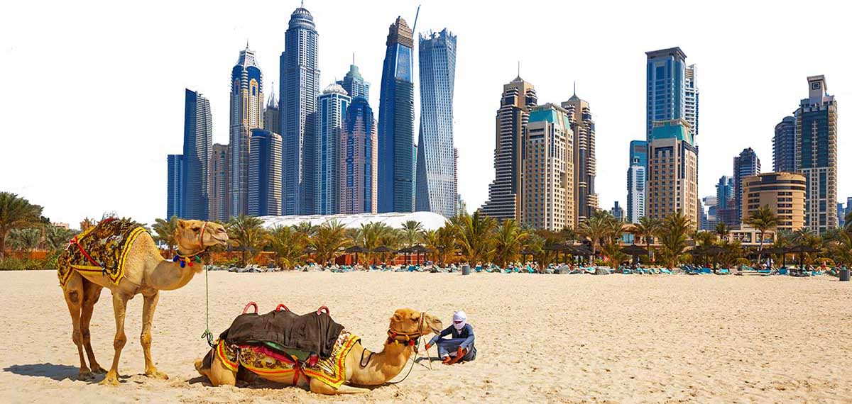 tours in Dubai